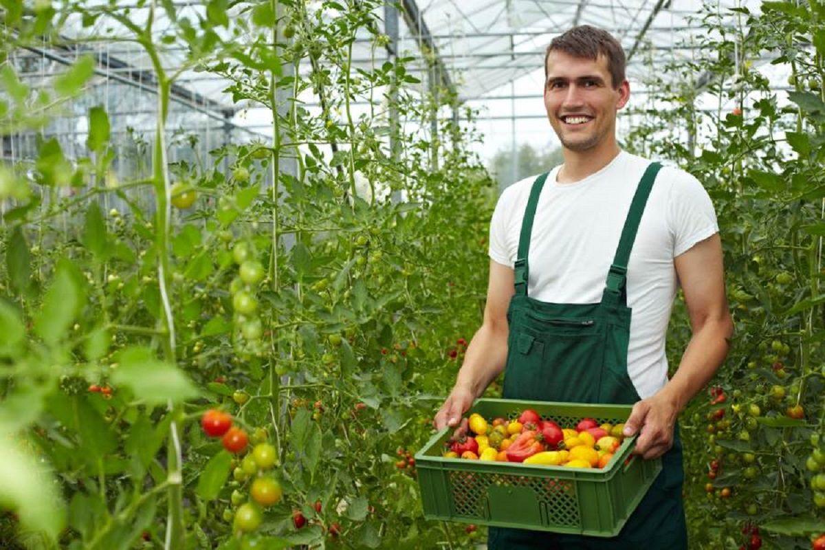 خرید مزرعه در کشور استرالیا