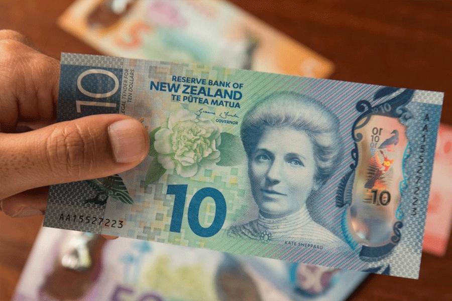 10 شغل پر درآمد نیوزیلند در سال 2020